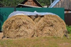 Mucchio di fieno, rivestimento di plastica coperto - azienda agricola di agricoltura al villaggio di estate Immagine Stock Libera da Diritti