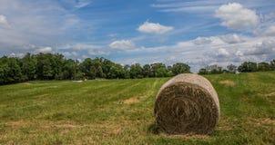 Mucchio di fieno sull'erba verde Fotografia Stock Libera da Diritti