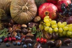 Mucchio di frutta autunnale Royaltyfria Bilder