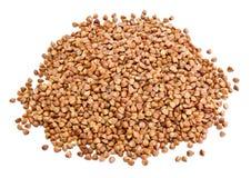 Mucchio di grano saraceno Fotografia Stock