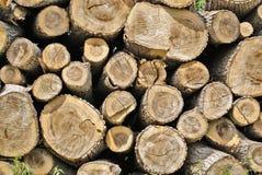 Mucchio di legno Immagini Stock Libere da Diritti