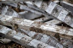 Mucchio di legno. Fotografia Stock