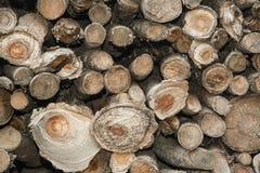 Mucchio di legno Fotografia Stock