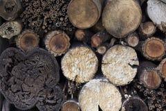 Mucchio di legno Fotografie Stock