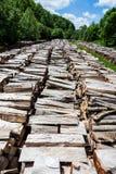 Mucchio di legno 2 Immagine Stock