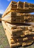 Mucchio di legno Fotografia Stock Libera da Diritti