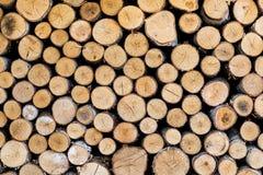 Mucchio di legno, ceppi Parete dei ceppi Progettazione di legno del fondo delle mattonelle Fotografie Stock