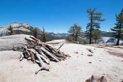 Mucchio di legno morto asciugato alla base di sotto cupola accanto alla mezza cupola in parco nazionale di Yosemite in California Fotografie Stock Libere da Diritti
