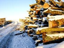 Mucchio di legno sulla strada nell'inverno Fotografie Stock Libere da Diritti