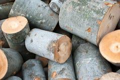 Mucchio di legno tagliato Fotografia Stock Libera da Diritti