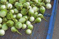 Mucchio di melanzana verde sulla vendita in Tailandia. Immagini Stock Libere da Diritti