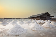 Mucchio di raccolta salata nell'azienda agricola originale del sale di tradizione Fotografia Stock