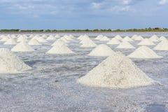 Mucchio di sale marino nell'azienda agricola del sale pronta per il raccolto Fotografia Stock Libera da Diritti