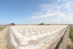 Mucchio di sale marino nell'azienda agricola del sale pronta per il raccolto, Tailandia Fotografie Stock
