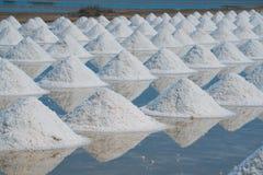 Mucchio di sale marino nell'azienda agricola originale dei prodotti del sale Fotografie Stock Libere da Diritti