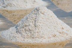 Mucchio di sale marino nell'azienda agricola originale dei prodotti del sale Immagine Stock
