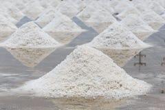 Mucchio di sale nell'azienda agricola del sale marino del sale Immagini Stock Libere da Diritti