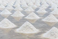 Mucchio di sale nell'azienda agricola del sale marino del sale Immagine Stock Libera da Diritti