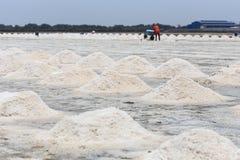 Mucchio di sale nell'azienda agricola del sale marino del sale Immagine Stock