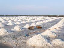 Mucchio di sale nella palude d'acqua salata prima del raccolto Immagine Stock Libera da Diritti