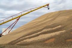 Mucchio di sorgo in Kansas Fotografia Stock