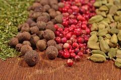 Mucchio di vari generi di spezie asciutte Fotografia Stock