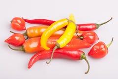 Mucchio di vari peperoncini isolati su fondo bianco Cottura gli ingredienti, gusto di spicey e del concetto dell'alimento biologi immagini stock libere da diritti