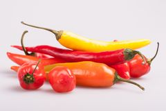 Mucchio di vari peperoncini isolati su fondo bianco Cottura gli ingredienti, gusto di spicey e del concetto dell'alimento biologi fotografia stock