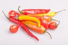 Mucchio di vari peperoncini isolati su fondo bianco Cottura gli ingredienti, gusto di spicey e del concetto dell'alimento biologi fotografia stock libera da diritti