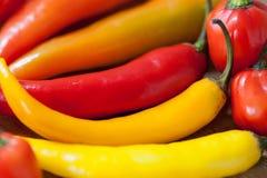 Mucchio di vari peperoncini su un fondo di legno Cottura gli ingredienti, gusto di spicey e del concetto dell'alimento biologico immagine stock