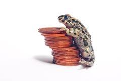 Mucchio di varie monete e della rana pazzesca Fotografie Stock