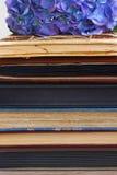 Mucchio di vecchi libri con i fiori Fotografie Stock