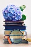 Mucchio di vecchi libri con i fiori Immagine Stock