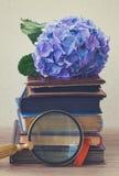 Mucchio di vecchi libri con i fiori Fotografia Stock