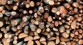 Mucchio di vecchia legna da ardere Fotografie Stock