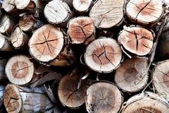 Mucchio di vecchia legna da ardere Immagini Stock Libere da Diritti