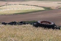 Mucchio di vecchie gomme sul campo Immagini Stock