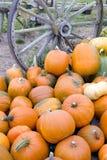 Mucchio di verdure Autumn Pumpkins October del vecchio vagone di scena dell'azienda agricola Immagini Stock