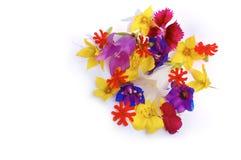 Mucchio grazioso dei fiori Fotografia Stock Libera da Diritti