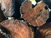 Mucchio impilato del legno di betulla Struttura, fondo legna da ardere per energia fotografia stock libera da diritti