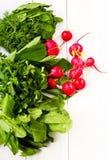 Mucchio organico sano della miscela fresca delle verdure Fotografia Stock Libera da Diritti