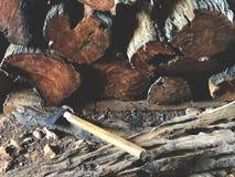 Mucchio tagliato ed impilato del legno di betulla Struttura, fondo fotografia stock libera da diritti