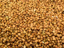 Much buckwheat croups Royalty Free Stock Images