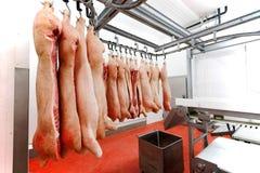 Mucha carne de cerdo cruda fresca tajada que cuelga y arreglar y que procesa la tienda en un refrigerador, en una fábrica de la c imagen de archivo libre de regalías