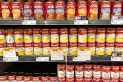 Mucha sopa del tomate, sopa del maíz puede en estante Imágenes de archivo libres de regalías