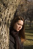 Muchacha 3 del árbol Imagen de archivo