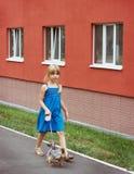 Muchacha 6 años que caminan con un terrier de Yorkshire cerca del edificio alto Foto de archivo libre de regalías