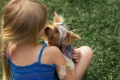 Muchacha 6 años una hierba que juega con Yorkshire Terrier Foto de archivo