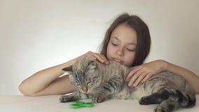 Muchacha adolescente alegre hermosa con un gato que juega con el hilandero verde de la persona agitada en el vídeo blanco de la c metrajes