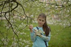 Muchacha adolescente con el pelo largo que se coloca al lado de un manzano floreciente en una primavera imagen de archivo libre de regalías